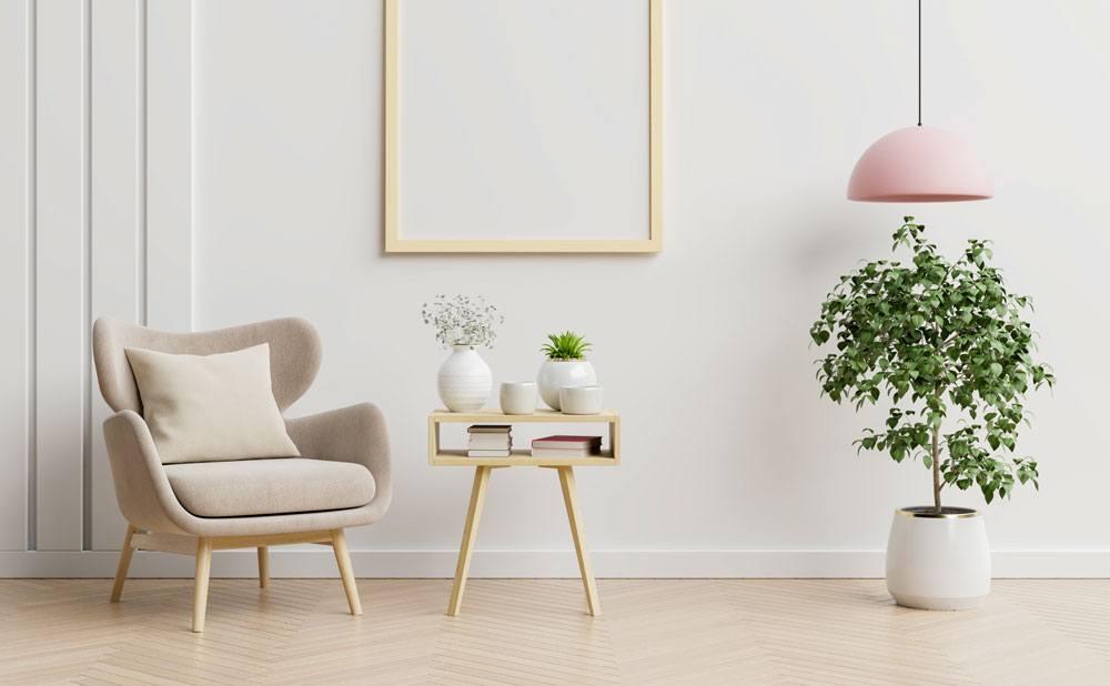Un air plus sain grâce aux plantes d'intérieur